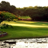 Selbourne Golf Course, KZN - copyright Wright Photographic