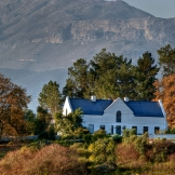Winelands, Western Cape - copyright Wright Photographic